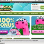 Bonus Dino Bingo