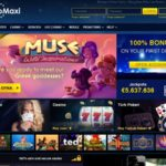Casino Maxi Setup Account