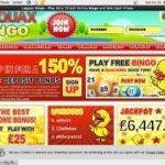 How To Bet Loquax Bingo