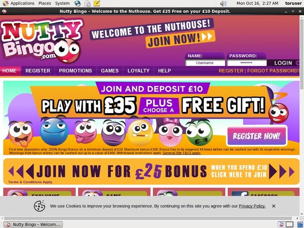 Nutty Bingo Games App