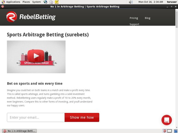 Rebelbetting Payment Options