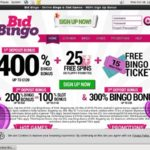 Bid Bingo New Customer Offer