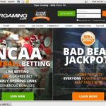 Tiger Gaming Max Bet