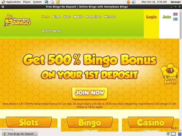 Honeybees Bingo Slots Bonus